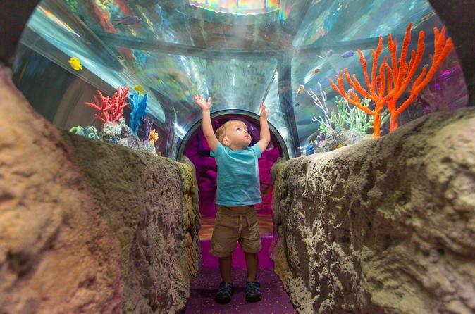 Icon 360, Madame Tussaunds & Sealife Aquarium - 1 Attraction